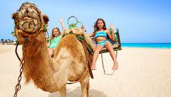 Kamelridning på Fuerteventura.