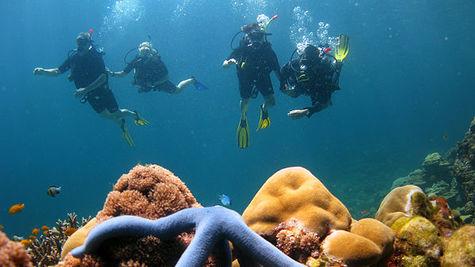 Amerikanska dykare vill undersoka estonia