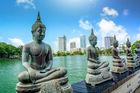 Hitta vinterns drömresa till Sri Lanka