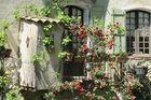 Till fots i Provence 8 dagar fr. 14 900 kr