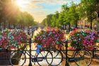 Holland Weekend 4 dagar, fr. 3 695:-