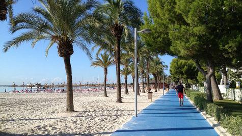 Alcudia är Mallorcas mest populära resmål.