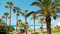 Alla resor till Cypern i maj