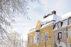 Julmys i Alingsås