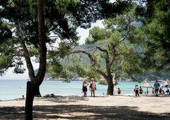 Bara några mil från de populära badorterna Alcudia och Puerto Pollensa på nordöstra Mallorca ligger den otroligt vackra stranden Platja de Formentor.