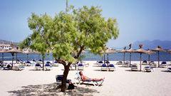 Mallorca är en av Medelhavets mest spännande öar.